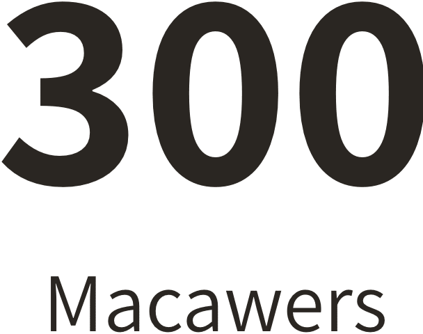 300 Macawers