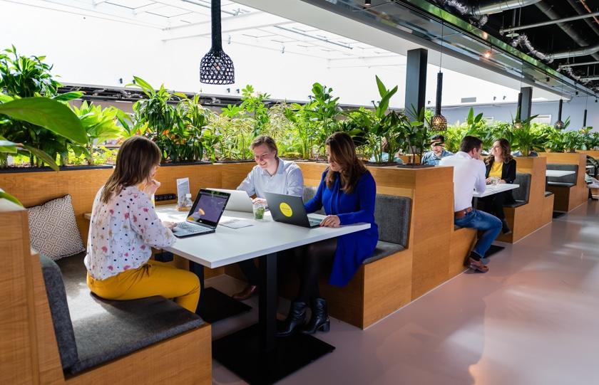 Business Intelligence Developer bij Macaw in Amsterdam